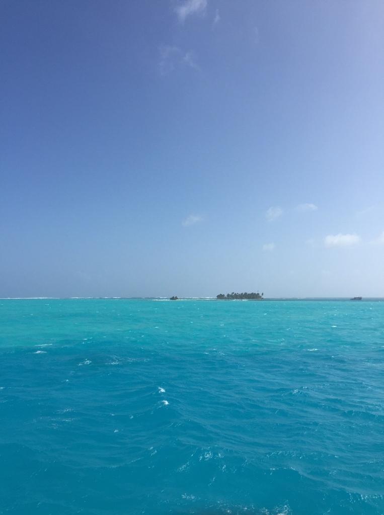 acuario san andres sea